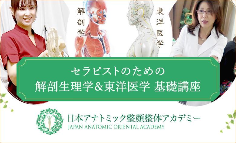 セラピストのための解剖学&東洋医学基礎講座